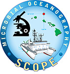 Scope Shield logo